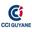 CCIG_Logo1.jpg