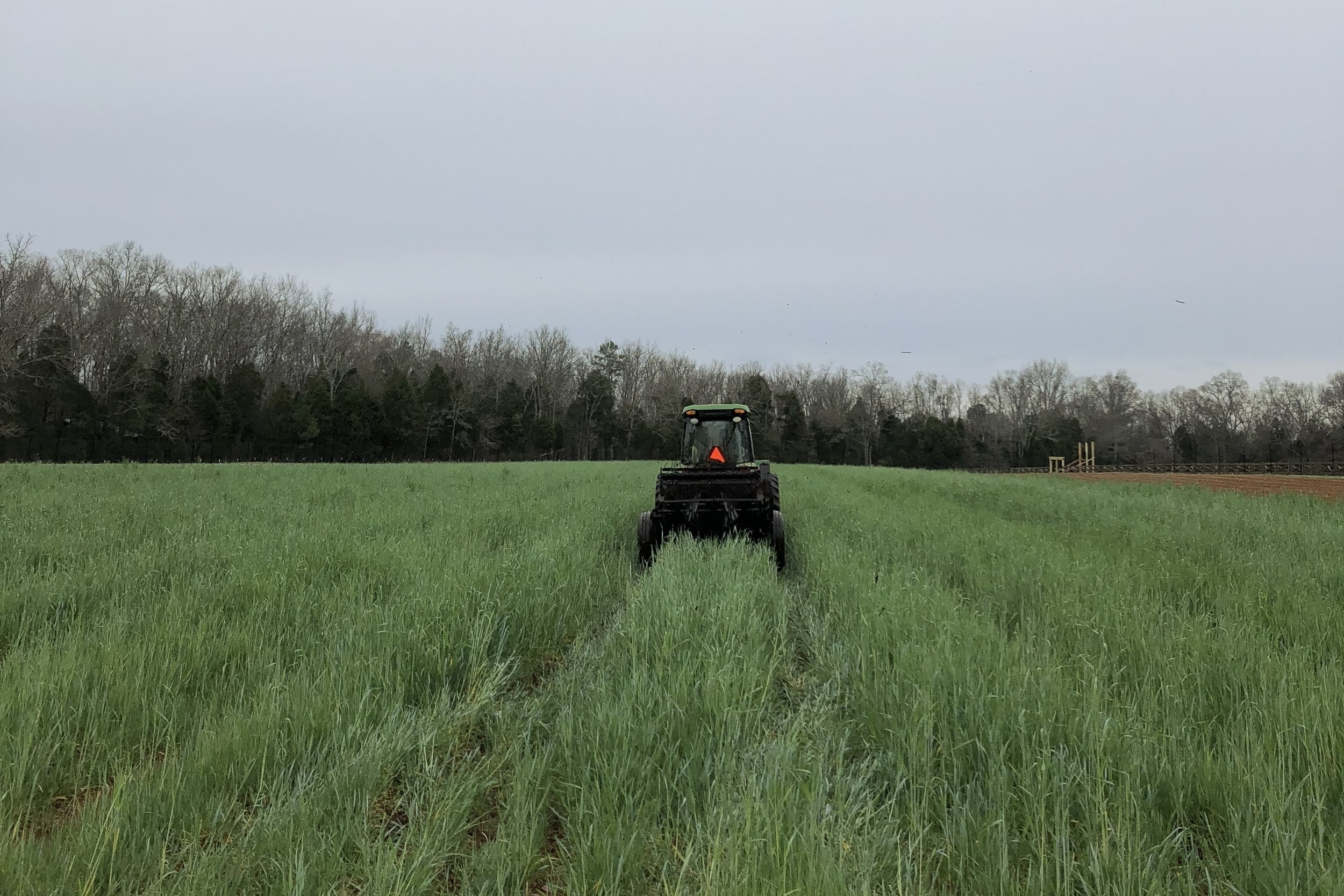 Advanced No-till Mulching and Crimping Techniques - BY SHAWN JADRNICEK