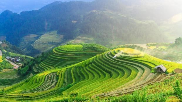Ubud Landscape.jpg