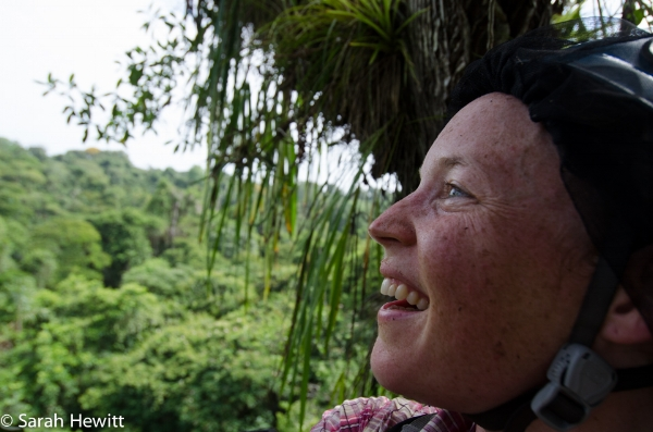 Me sitting in the top of a giant Lecythis Ampla tree, La Selva, Costa Rica.