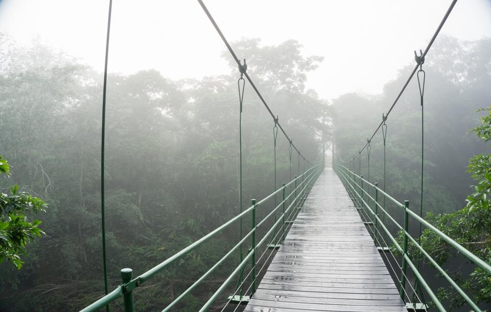 The bridge to the rainforest, La Selva Biological Station, Costa Rica.