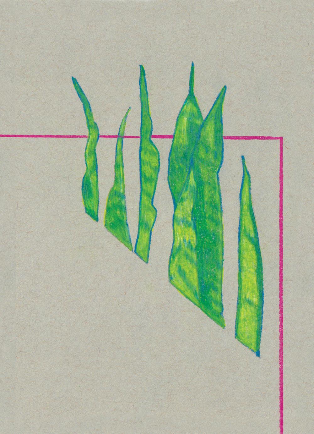 Plant-1.jpg