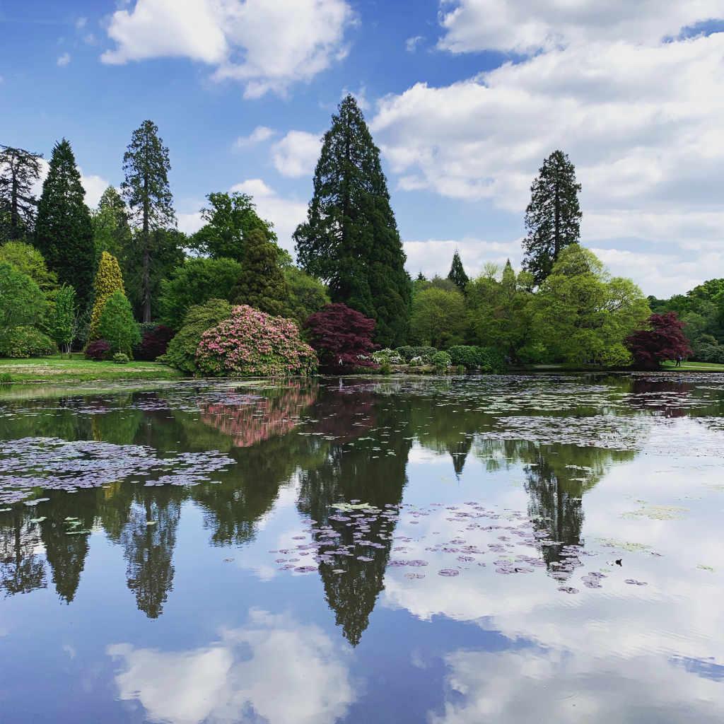Sheffield Park 1.jpg