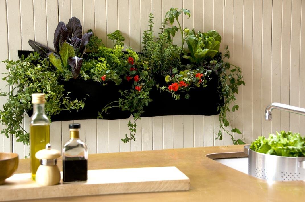 http://www.thegreencurator.com/wp-content/uploads/2015/10/wally-kitchen-vegetable-garden-indoor.jpg