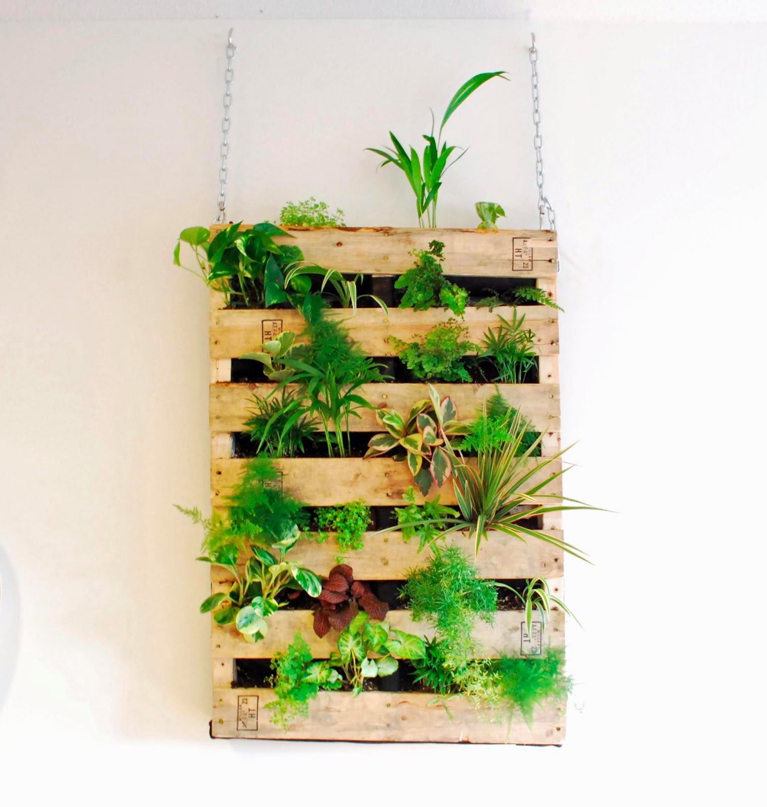 http://drawingsunderthetable.blogspot.com/2013/01/diy-pallet-vertical-garden.html