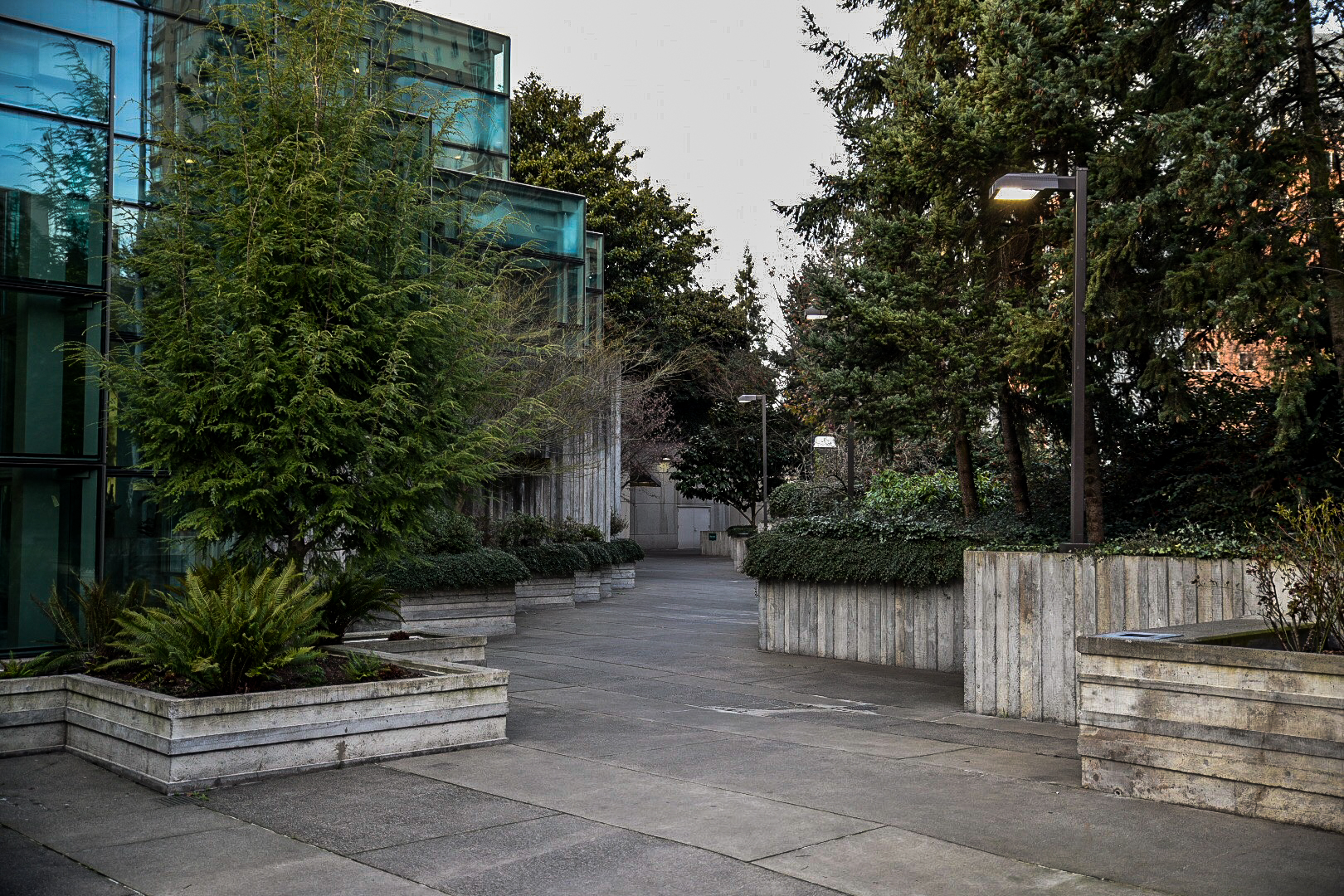 Freeway Park Improvements