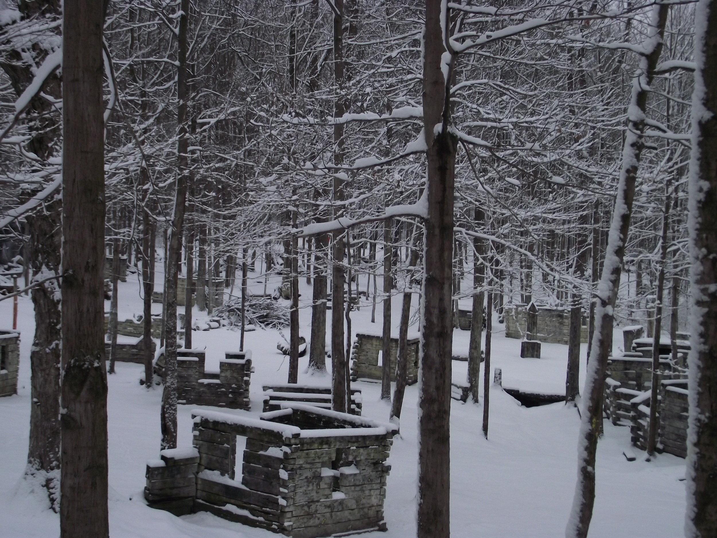 Feb 4 snowfall (7).JPG