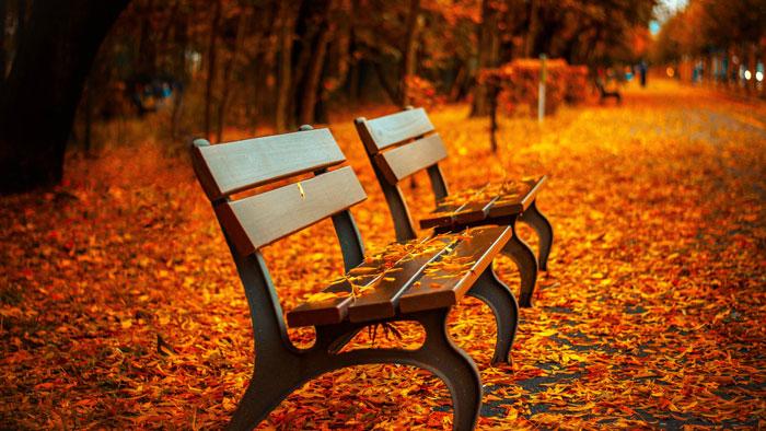 seasons-of-life.jpg