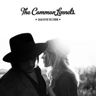 The_Common_Linnets_-_Calm_After_the_Storm.jpg
