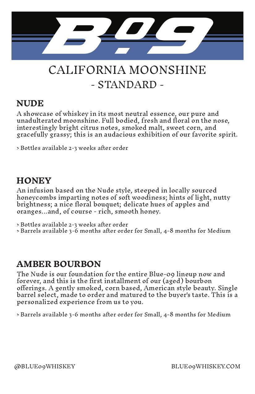 B-09 Info Sheet-Standard.jpg