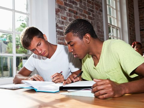 scep-priority-and-focus-schools_20598739-two-boys-studying.jpg