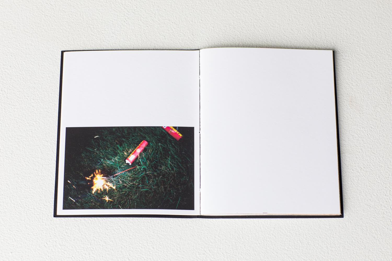 mccullough_fires-14.jpg