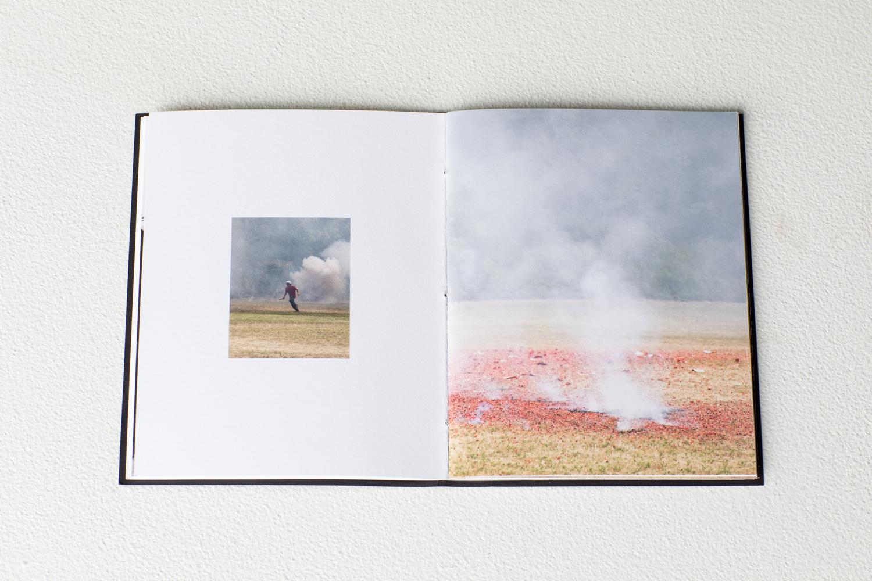 mccullough_fires-12.jpg
