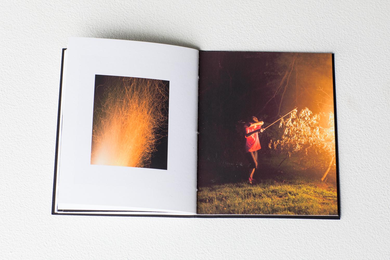 mccullough_fires-4.jpg