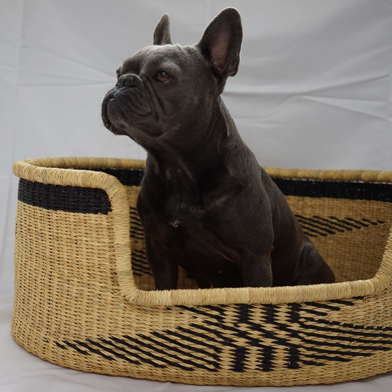 MWAMBO DOG BASKET - LARGESize: 70cm x 50cm x 28cm Approx - £140