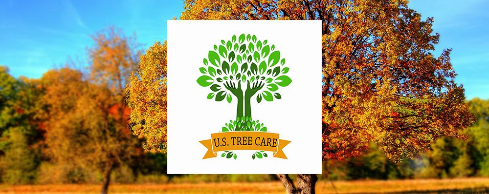 US Tree Care Banner.jpg