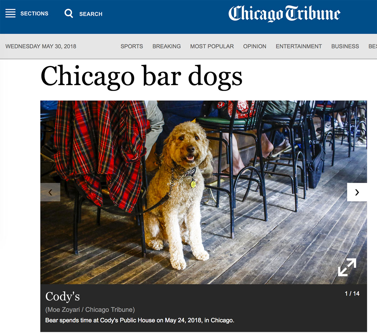Moe_Zoyari_Chicago_Tribune_04.jpg