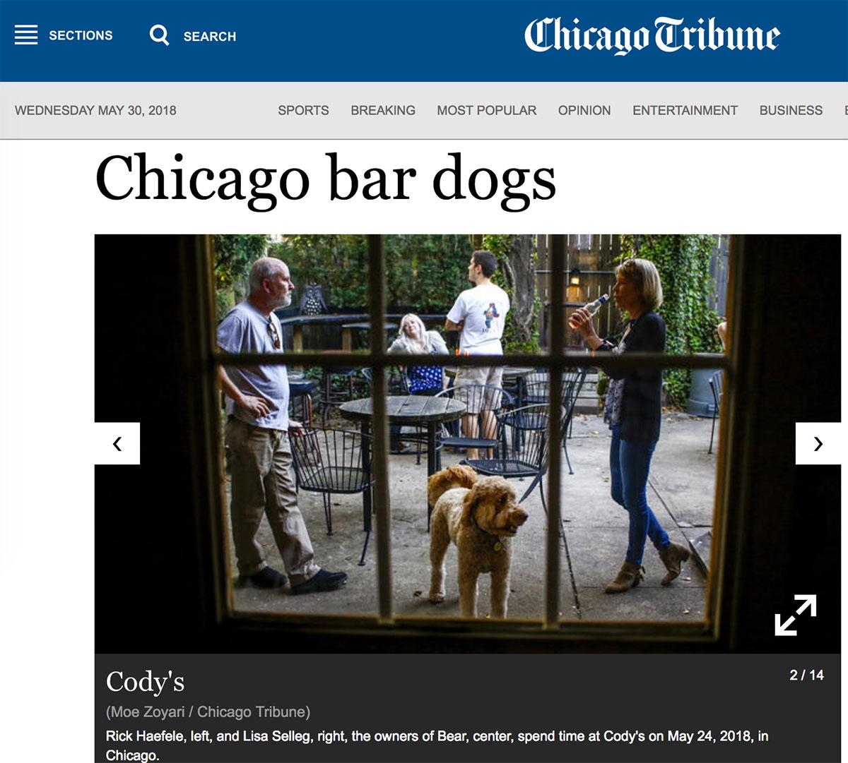 Moe_Zoyari_Chicago_Tribune_03.jpg