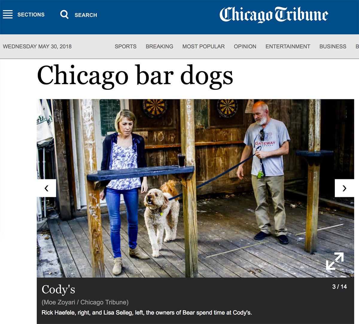 Moe_Zoyari_Chicago_Tribune_02.jpg