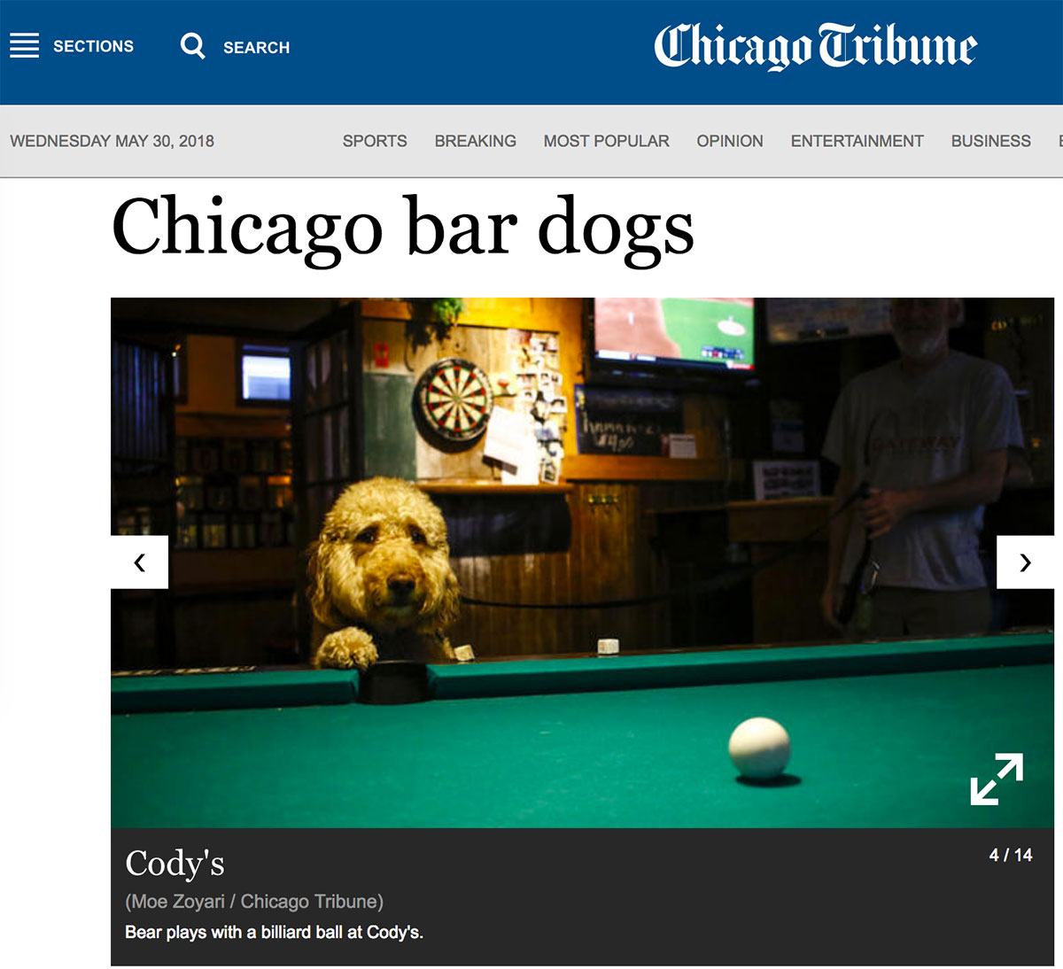 Moe_Zoyari_Chicago_Tribune_01.jpg