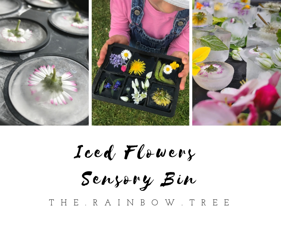 Iced Flowers Sensory play.jpg