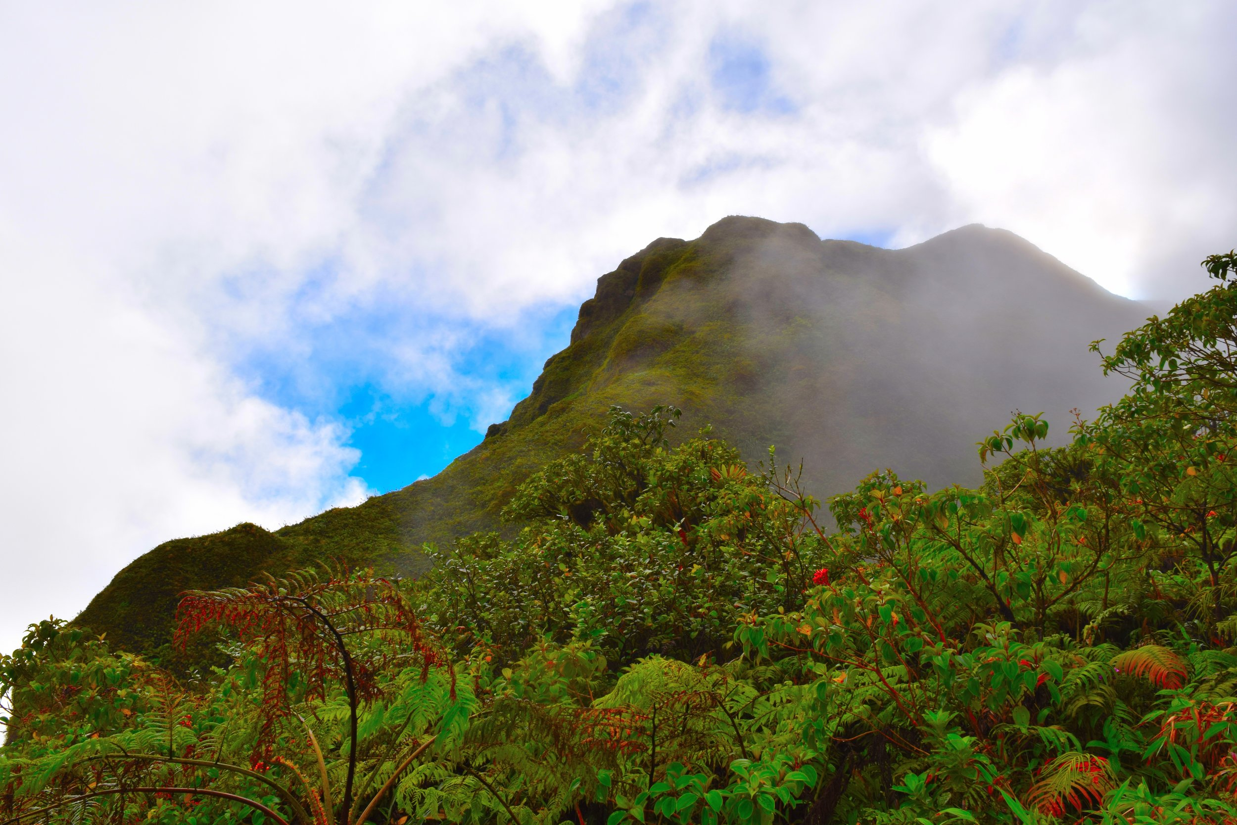 The beautiful Mt.Peele in Martinique.