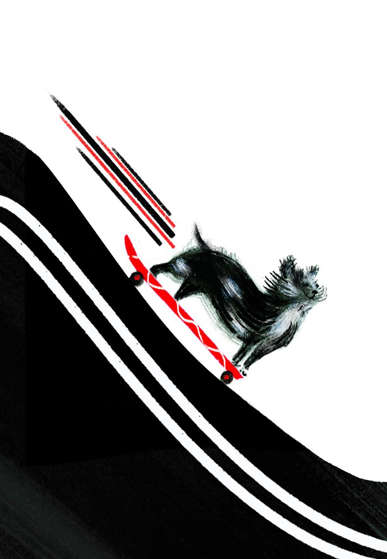 Sarah Jacoby Walt's Wild Ride.jpg
