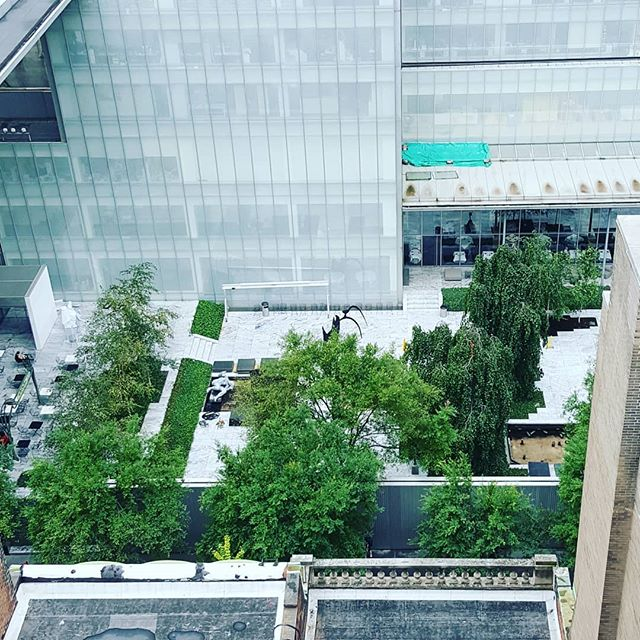 Meeting overlooking the MOMA Sculpture Garden. Hard to pay attention when the views are so distracting. . . #ilovenyc #theviewfromhere #artnyc @themuseumofmodernart