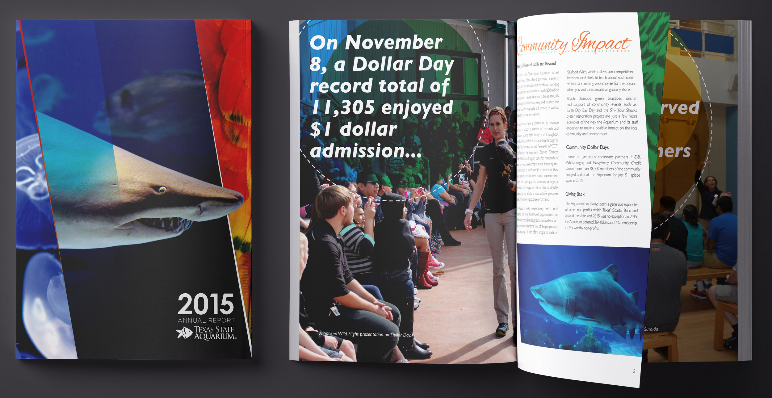 TSA_2015AnnualReport-crop.jpg