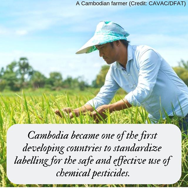 With the help of the Cambodia Agricultural Value Chain Program, Cambodia became one of the first developing countries to standardize labelling for the safe and effective use of chemical pesticides. http://ow.ly/lDtO30mM4jd