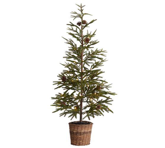 """48"""" Faux Lit Pine Tree in Basket"""