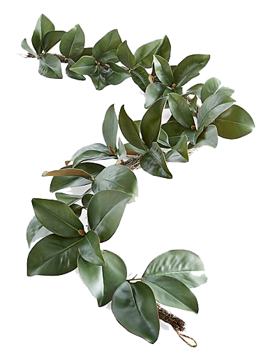 Magnolia Garland copy.png