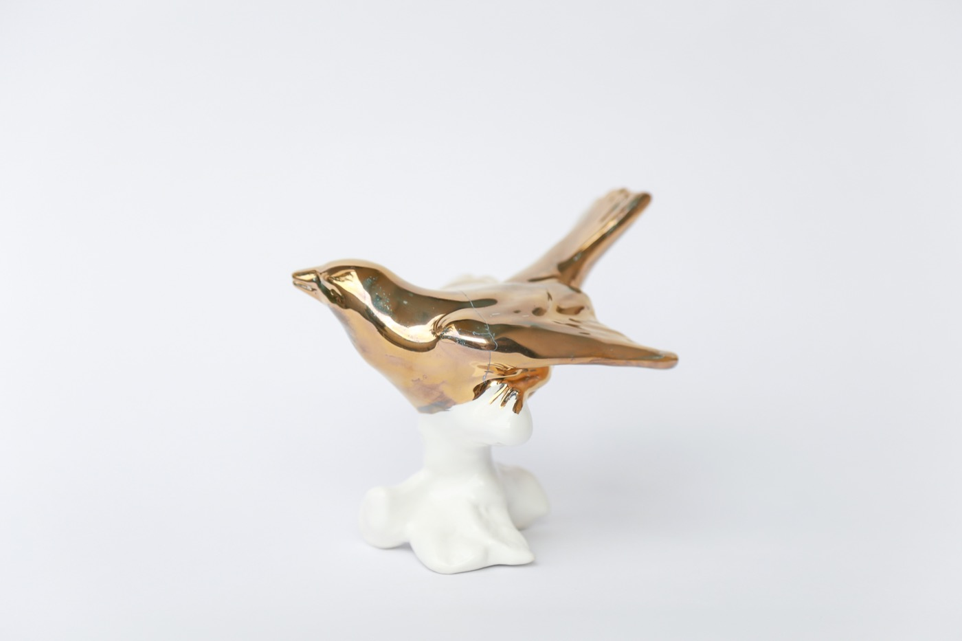 Little bird 4