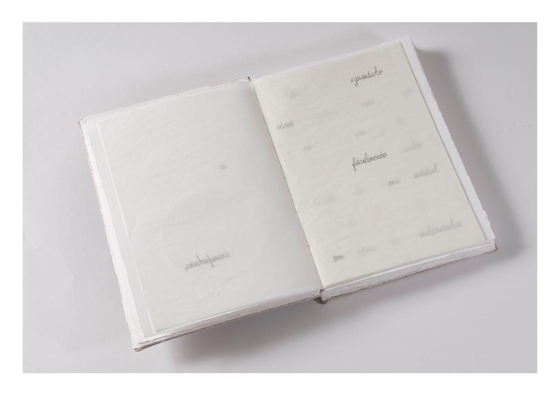 libros de artista _AID43.jpg