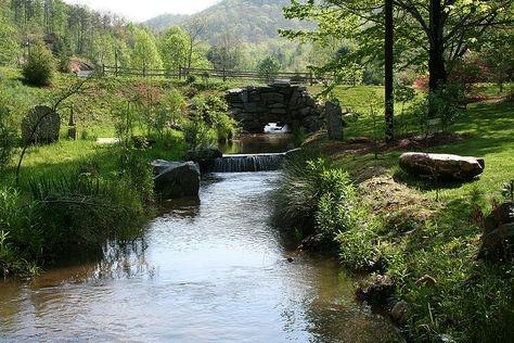Betty's Creek.jpg