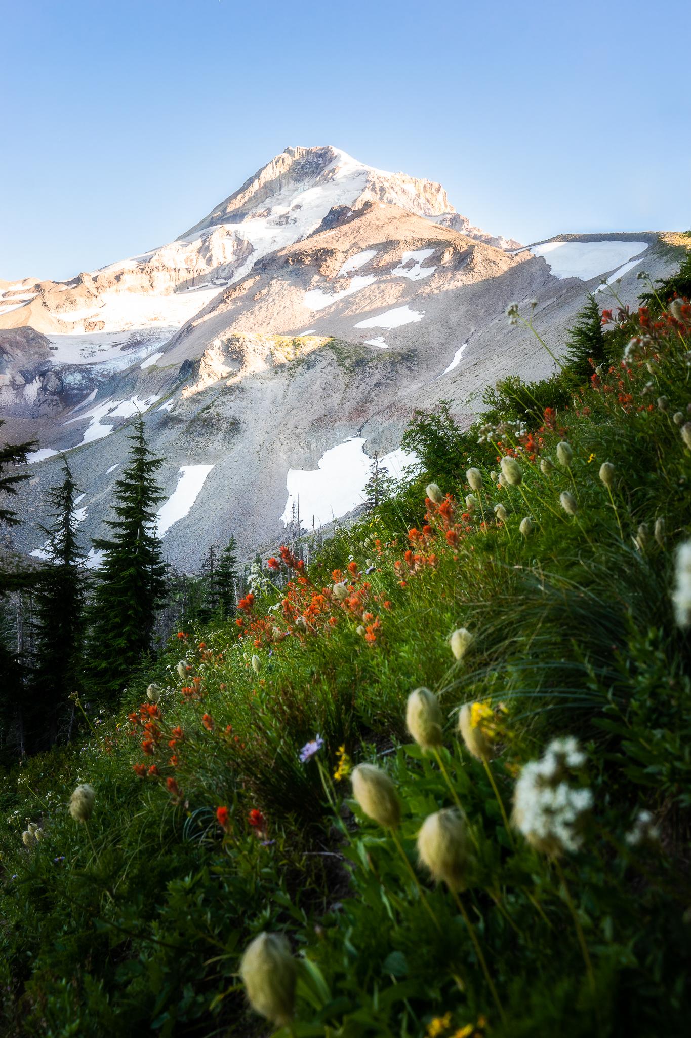 Mt. Hood - Website.jpg