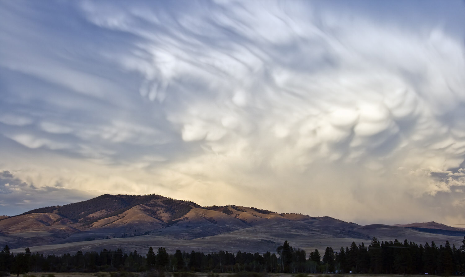 The Montana sky is the limit. -