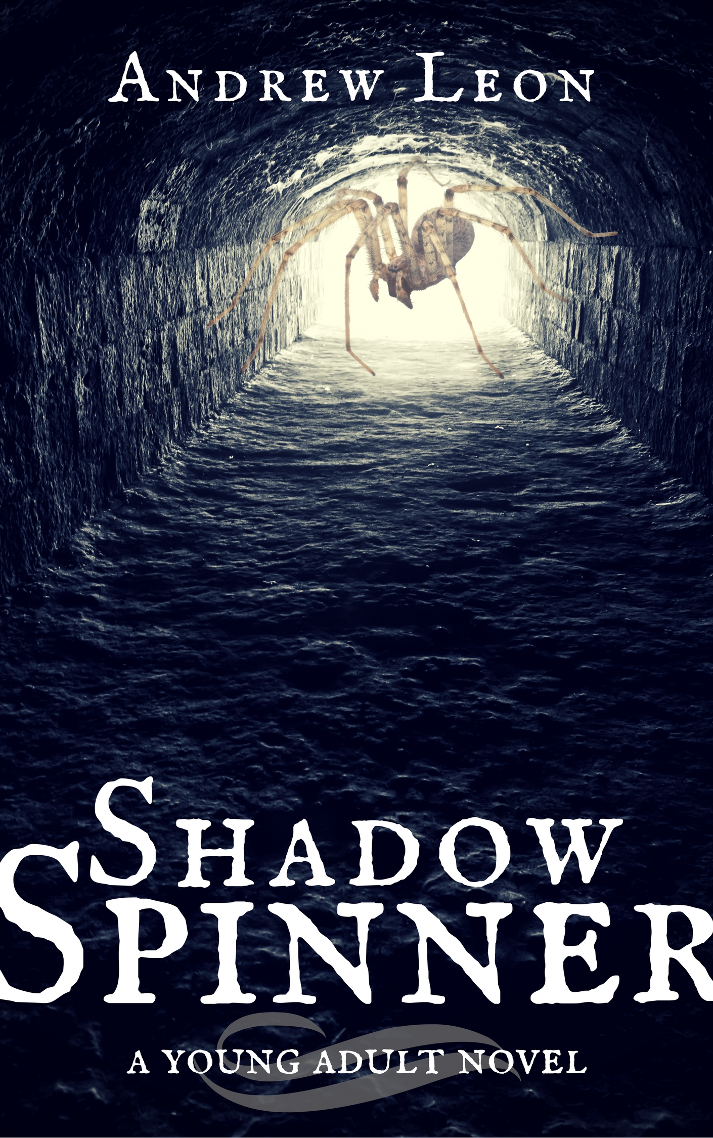 Shadow Spinner Book Cover