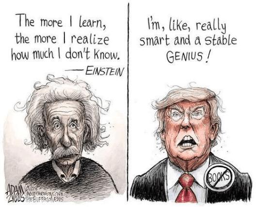 Einstein-Trump.png
