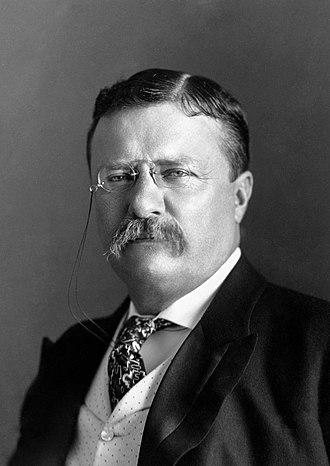 Pres. Theodore Roosevelt