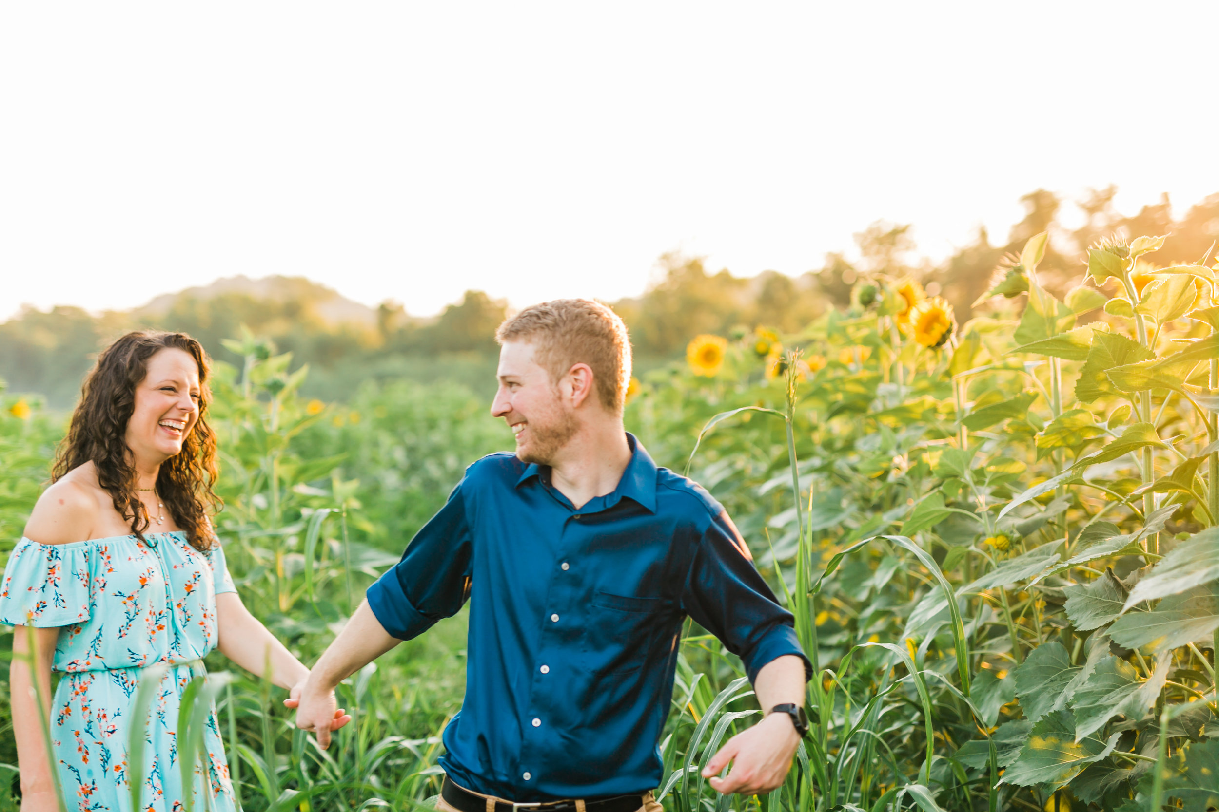 engagement sunflower field knoxville tn