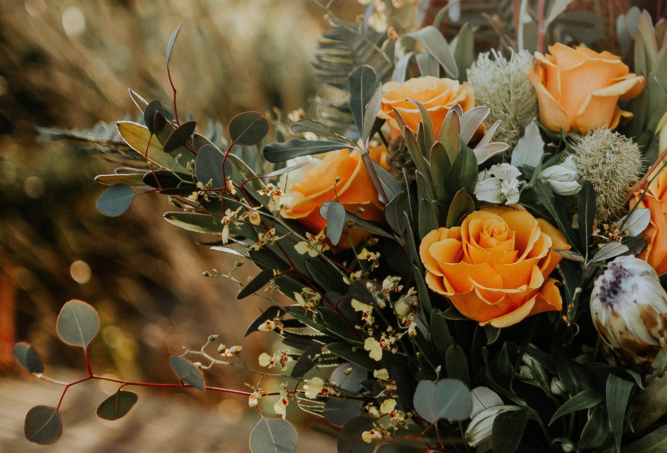 Cascara-PaulineHoldenPhotography-8090-2.jpg