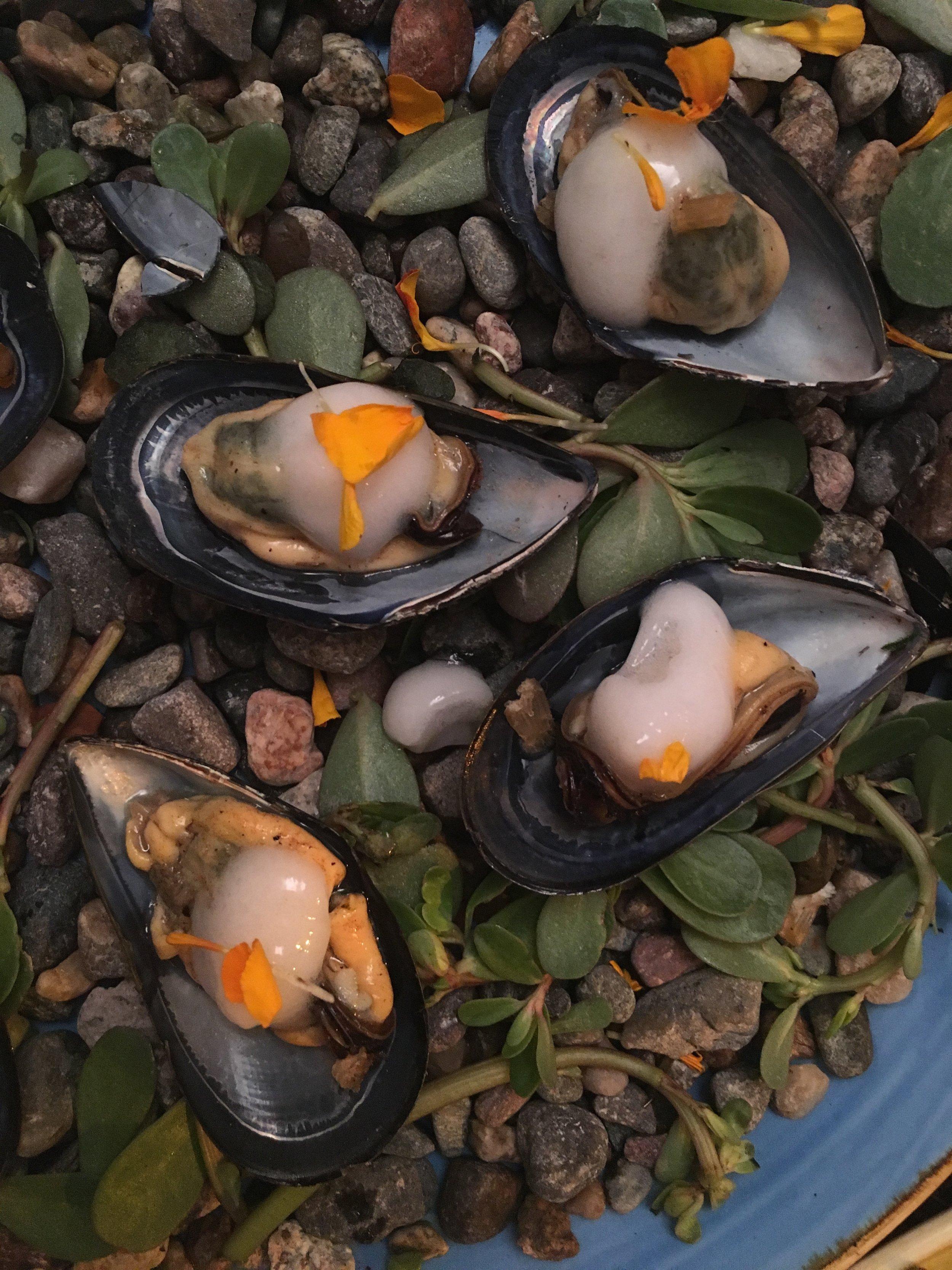Mussels with Vinegar Sea Foam. Kali.