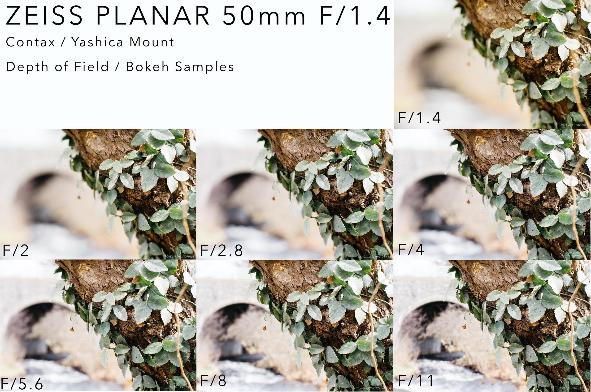 zeiss planar 50 14 bokeh sample.jpg