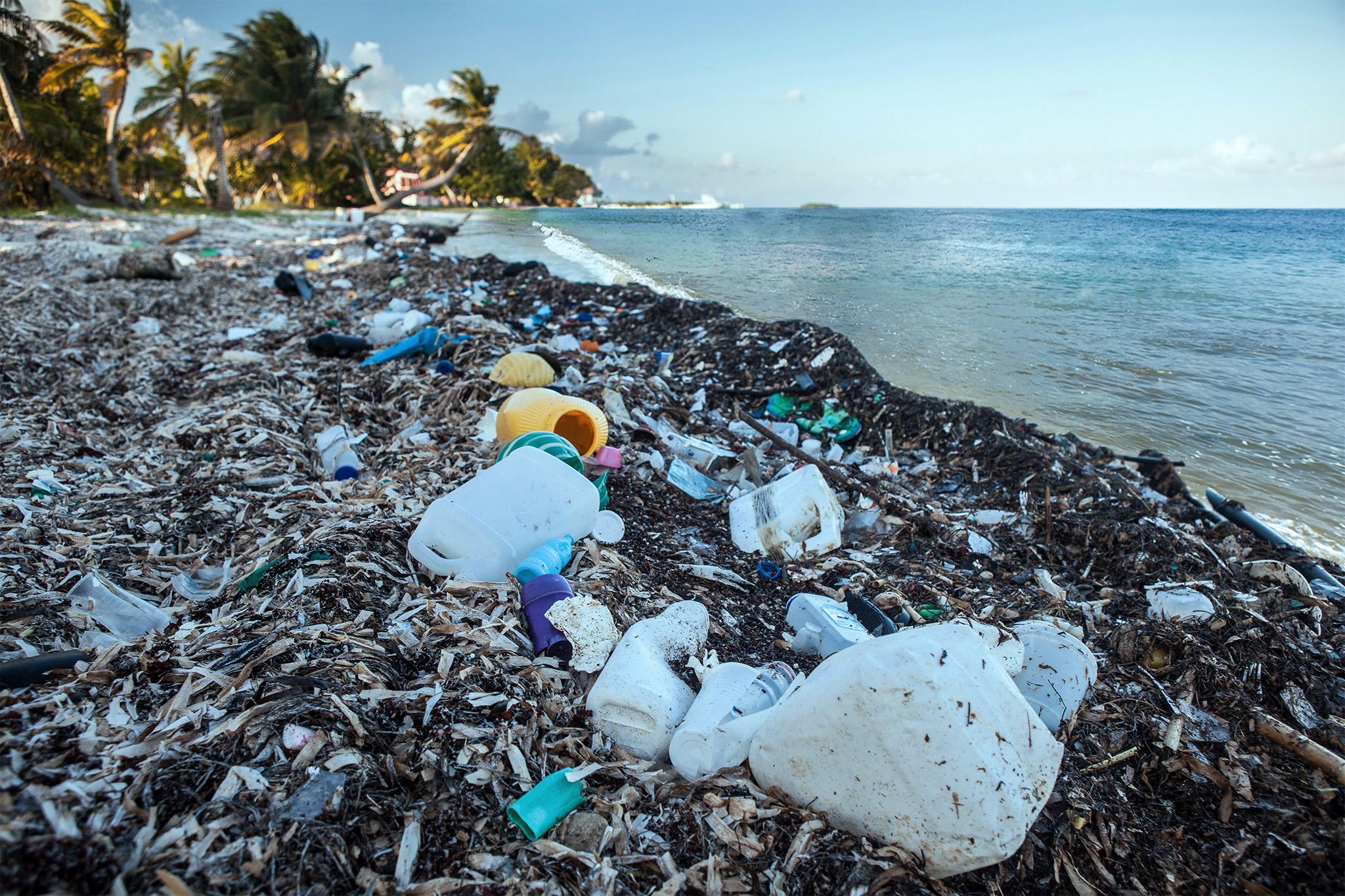 trashy beach.jpg