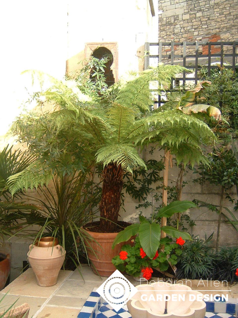 Jane Hull's Moroccan garden 006 copy.jpg