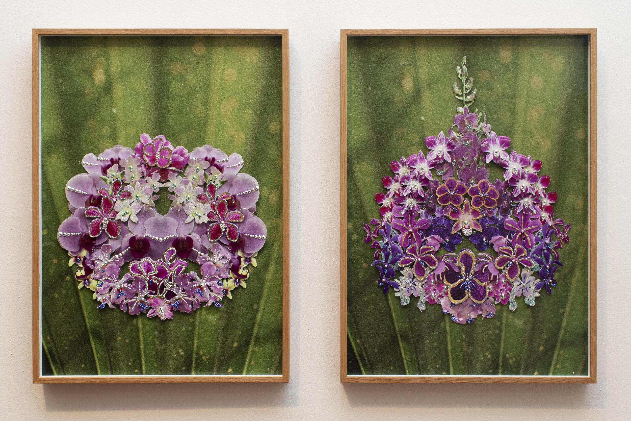 Chao Praya Bloom.jpg