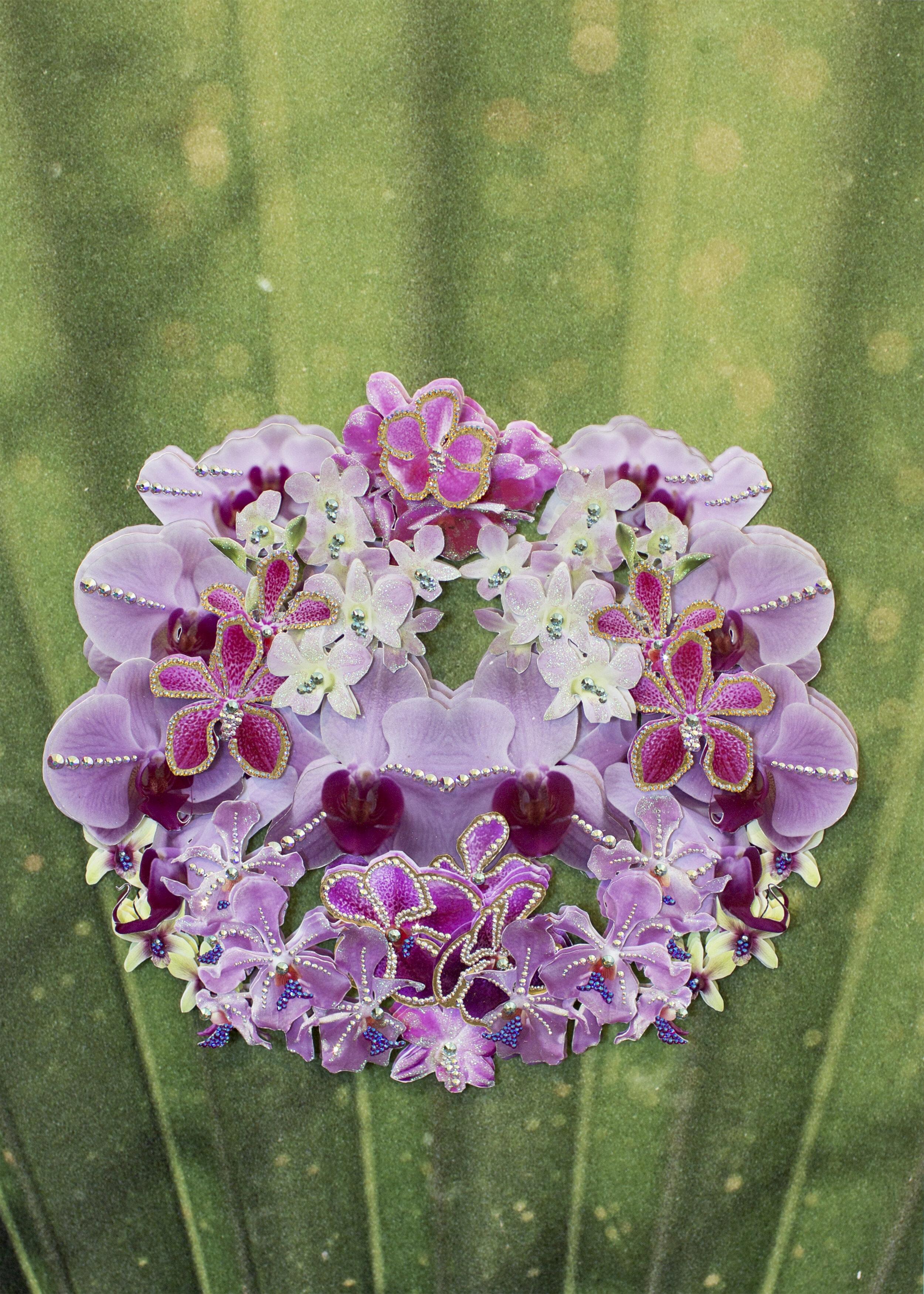 Chao Praya Bloom (ii) 1.jpg