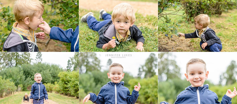 child photos at bellevue blueberry farm