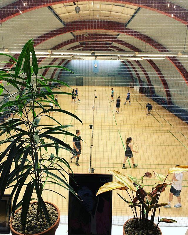 Udsigt fra vores caféterie. Gang i Hermes Hallen i aften. #cafeteriet . . . #sportshal #badminton #cafe
